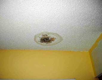 از بین بردن علت نم و رطوبت و چکه از سقف و طبقه بالاتر